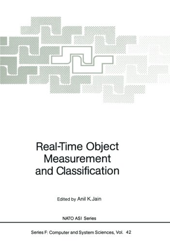 Real-Time Object Measurement and Classification (Nato ASI Subseries F:) (Tapa Blanda)