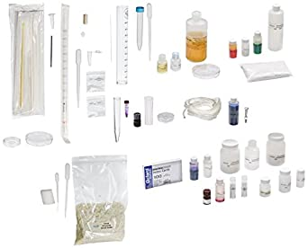 Edvotek 293 A P Biology Special Package of 12 Laboratory Kits