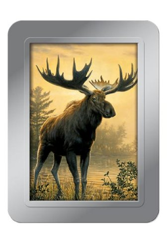 Tree-Free Greetings Northwoods Moose Deluxe Playing Cards, Multicolored (71007)