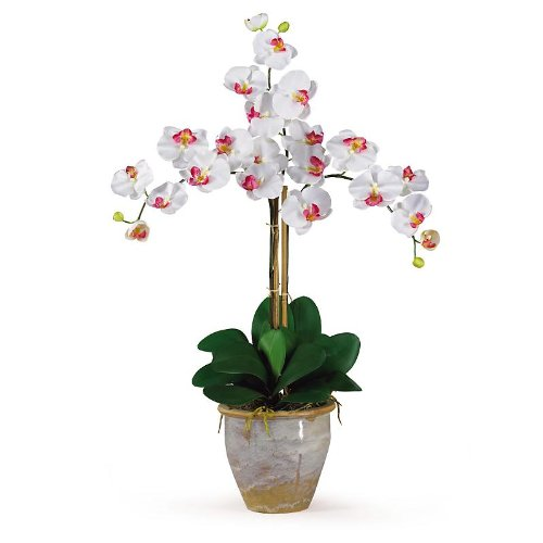 New Nearly Natural Triple Stem Phalaenopsis Silk Orchid Flower Arrangement Charming Realistic White