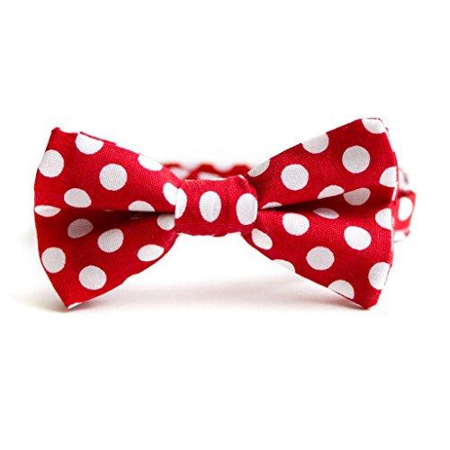 1bbc4d7490e5 Poker dot bow tie