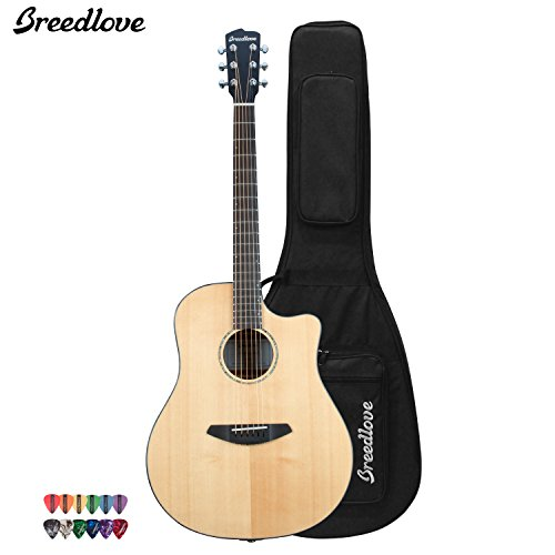 Breedlove Solo Dreadnought Acoustic Electric Guitar With Chromacast 12 Pick Sampler And Breedlove Deluxe Foam Shell Case