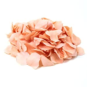 Koyal Wholesale 1000-Pack Silk Rose Petals, Apricot Orange