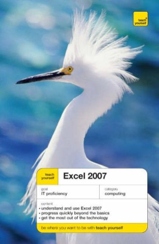 teach-yourself-excel-2007-tyco