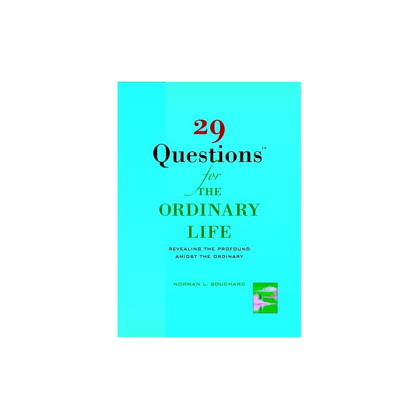 29 Questions for the Ordinary Life Revealing the Profound Amidst the