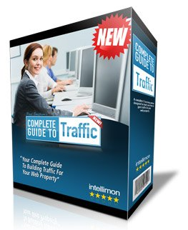 The Complete Guide to Traffic: Quickly develop the skills needed to boost traffic, revenues and profits for your website