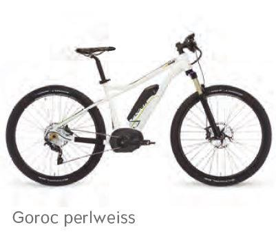 E-Mountainbike Flyer Goroc 8.7 weiß Gr. L (48 cm) 27,5' 11 AH Nyon Display