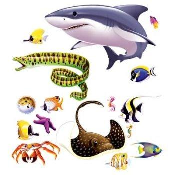 Marine Life Props - 1