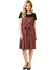 Ditsy Floral Sheer Fit & Flare Dress with Belt