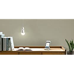 TP-Link Smart LED Light Bulb, Wi-Fi, Dimmable White, 50W Equivalent, Works with Amazon Alexa, 1-Pack (LB100)