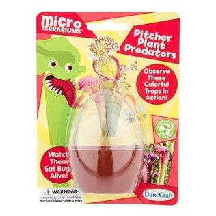 Pitcher Plant Predators Micro Terrarium (Pitcher Plant Predator compare prices)