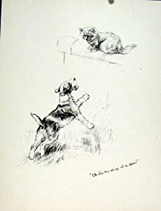 Amazon.com - Cat Dog Chase Chasing Sketch Pencil Drawing Fine Art