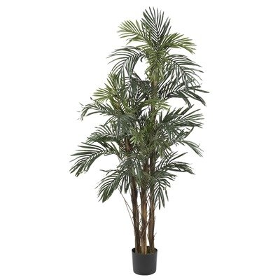 Silk Robellini Palm Tree in Green Height: 60