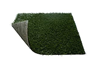 "Pet Potty Toilet Training Replacement Grass Pad for Pet Zoom Pet Park Large 30"" X 20"" X 2"""