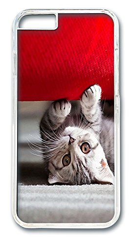 Best Couches For Cats front-375456