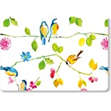 Watercolor Birds Note Cards (Boxed Cards, Stationery)