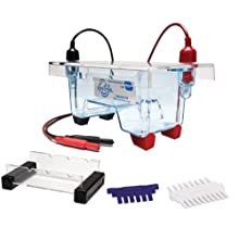 Edvotek M6Plus Electrophoresis Apparatus, 1 Lab Groups Sample, 7cm Length x 10cmcm Width Trays