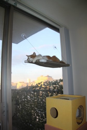 Cat Window Seat Sunny Seat Window Mounted Cat Bed