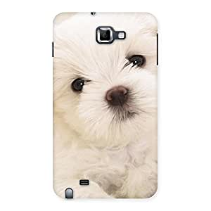 Premium Cute Pup White Back Case Cover for Galaxy Note