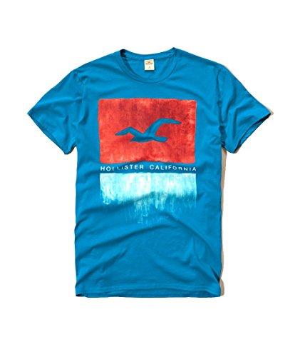 hollister-mens-graphic-logo-t-shirt-medium-turquoise-seagull