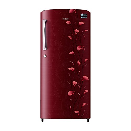 Samsung-RR19K273ZUZ-192-Litre-5S-Single-Door-Refrigerator