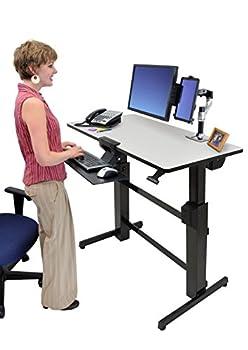 エルゴトロン WorkFit-D、座位-立位両用デスク ライトグレイ 24-271-926