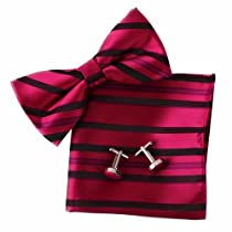 EBC1025 Red Stripes Excellent Silk Pre-tied Bowtie Cufflink Hanky Set By Epoint