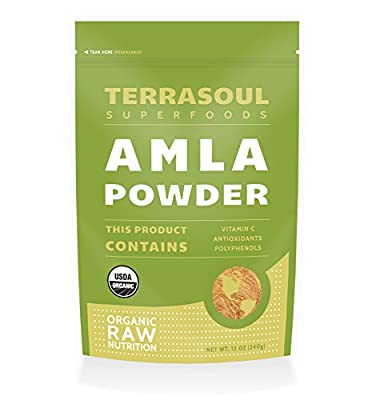 Terrasoul Superfoods Amla (Amalaki) Berry Powder (Organic)