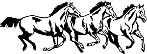Unicorn Pegasus Coloring Pages furthermore Products moreover 5790 additionally Barnyardanimalspatterns further Unicorn head. on horse stencil