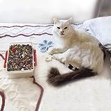 Mr.-Kitty''s-Big-Bead-Bonanza---Beads-Mix---1-2-Pound