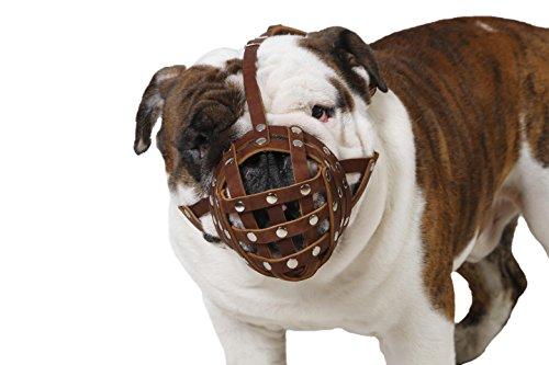 CollarDirect Basket Dog Muzzle for Boxer, English Bulldog , American Bulldog Secure Leather Muzzle (Brown) (Muzzle For Bulldog compare prices)