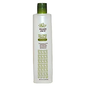 Trader Joe's Tea Tree Tingle Shampoo with Peppermint, Tea Tree and Eucalyptus Botanicals, 16-Ounces