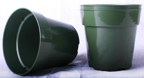 50 NEW 6 Inch Standard Plastic Nursery Pots ~ Pots ARE 6 Inch Round At the Top and 5.6 Inch Deep. (6 Plastic Pot compare prices)