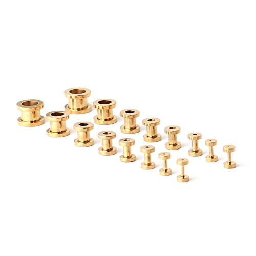 Ruifan 16pcs Surgical Steel Screw Tunnel Gauge Ear Expander Stretching Kit Plugs Piercing -8 Pairs 14g-00g (1.6mm-10mm) Gold Plated (Gold Ear Plugs compare prices)