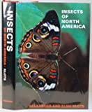 img - for Insects of North America book / textbook / text book