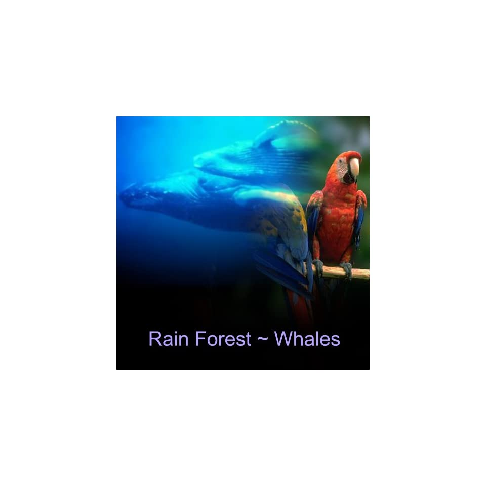 Nature Sounds Rain Forest Whales Soothing Relaxation CD No