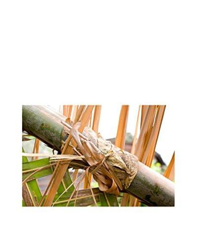 CM Creation Cuadro Decoplex Bambú 50X100