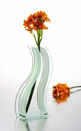 SHAPED GLASS VASE - 11 INCH Curve SHAPED GLASS VASE