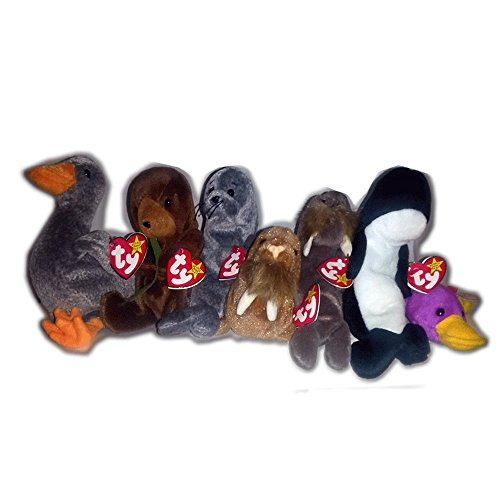 Ty Beanie Baby Water Babies Sea Creature Bundle  Lot of 7 af7fa1ebf7d7