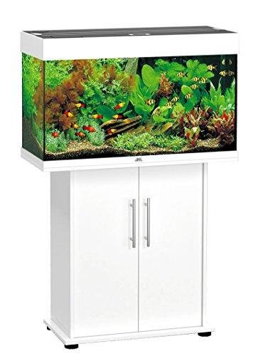 aquarium komplettset test die top 5 bestseller. Black Bedroom Furniture Sets. Home Design Ideas