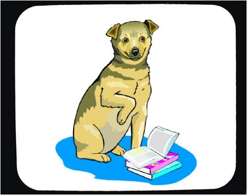 Decorated Mouse Pad with blanket, books, dog