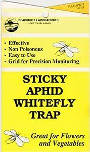 Sticky White Fly Traps 5/pk