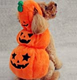 Milkeeペット服 ペットウェア ハロウィン カボチャ 犬猫 オレンジ 仮装 コスチューム 秋、冬服 変身 (L)