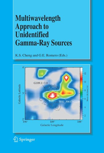 Multiwavelength Approach to Unidentified Gamma-Ray Sources: A Second Workshop on the Nature of the High-Energy Unidentif