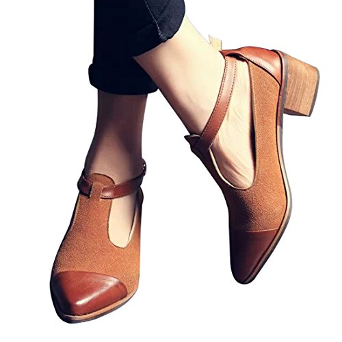 Susanny Women's Vintage Cute T-strap Low Heel Pointed Toe Oxfords Pump Shoes with Buckle 2
