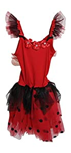 Pink Poppy Ladybug Fairy Dress with Wing