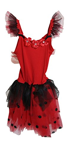 Pink Poppy Ladybug Fairy Dress With Wing (3/4) front-326639