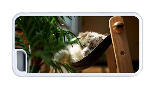 Hipster Iphone 5C Sale Case Cat Sleep Hammock Tpu White For Apple Iphone 5C front-1079246