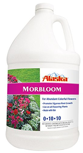 alaska-morbloom-concentrate-0-10-10-fertilizer-1-gallon