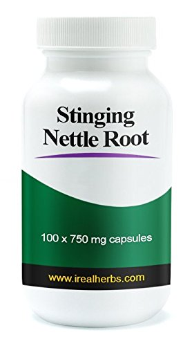 Real Herbs Stinging Nettle Root Extract 750mg (1 percent Silica) Promotes Prostate and Urinary Tract Health, Potent Antioxidant and Increases Testosterone 100 Vegetarian Capsules